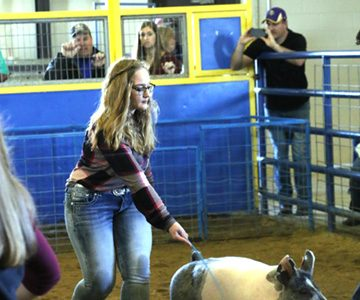 Students win in FFA competition